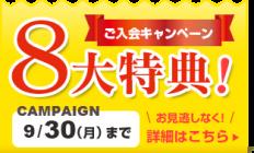 campaign201909
